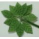 Satin Leaves - Green