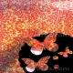 Mirri Butterflies - Opera - Red