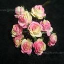 Paper Tea Roses - Pink & Cream