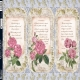 Della Rosie - 3 Sheet Pack