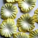 Lemon & White