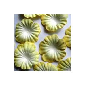 https://www.jjdcards.com/store/1497-2130-thickbox/lemon-white.jpg