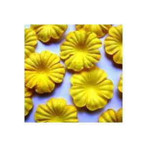 https://www.jjdcards.com/store/1498-2131-thickbox/yellow.jpg