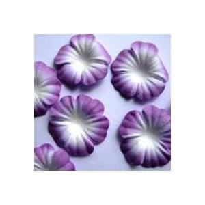 https://www.jjdcards.com/store/1503-2136-thickbox/purple-white.jpg