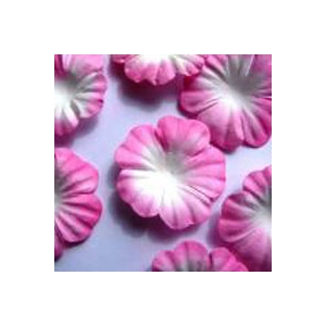 https://www.jjdcards.com/store/1506-2139-thickbox/pink-white.jpg