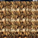 Animal Print - Tiger