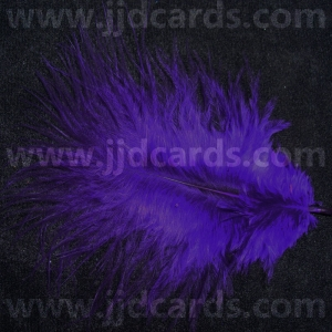 https://www.jjdcards.com/store/1946-2638-thickbox/purple-feathers-assorted-sizes.jpg