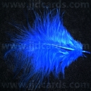 Royal Blue Feathers - Assorted Sizes