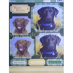 https://www.jjdcards.com/store/2822-3575-thickbox/its-a-dogs-life-lovely-labradors.jpg