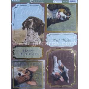https://www.jjdcards.com/store/2825-3578-thickbox/its-a-dogs-life-a-mans-best-friend.jpg