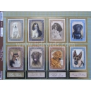 Its a Dogs Life - Dog Stamps