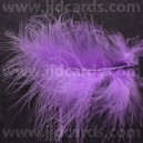 Lilac Feathers - Assorted Sizes