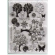 Acrylic Stamps - Spring Garden - STAMP9002