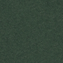 A4 Pearlescent Paper - Black Forest Green