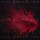 Burgandy Feathers - Assorted Sizes