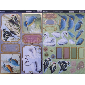 https://www.jjdcards.com/store/3047-3847-thickbox/loving-birds-blank-2-sheet-pack.jpg