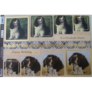 https://www.jjdcards.com/store/3891-5695-thickbox/its-a-dogs-life-pyramage-pups.jpg