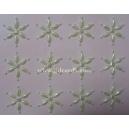 Pearl - Star Flowers