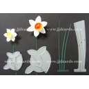 BRITANNIA DIES - SMALL & MEDIUM DAFFODIL WITH LEAVES
