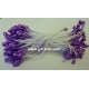 Stamens - Purple