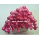 Stamens - Bright Pink
