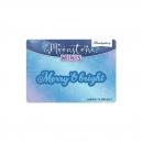 Moonstone Minis - Christmas Sentiments - Merry & Bright - MSTONE387