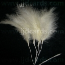 Long Stemmed Feathers - Lemon