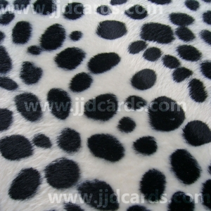 https://www.jjdcards.com/store/83-1396-thickbox/animal-prints-dalmatian.jpg