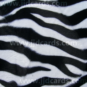 https://www.jjdcards.com/store/85-1394-thickbox/animal-prints-zebra.jpg