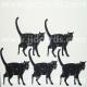 Standing Black Cats